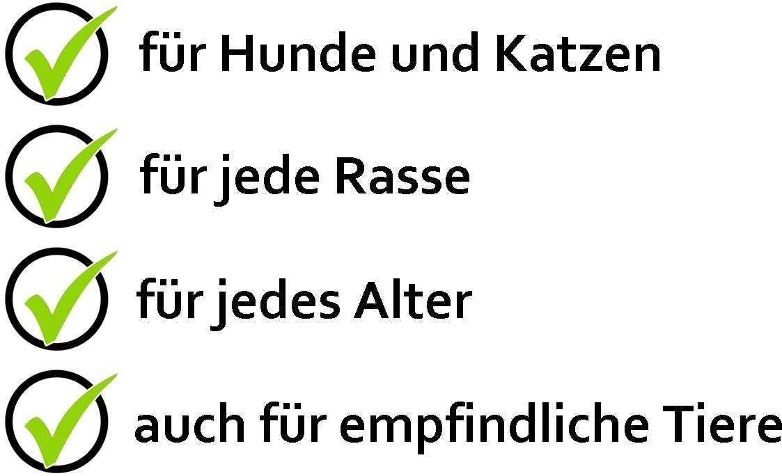 4-punkte_mit