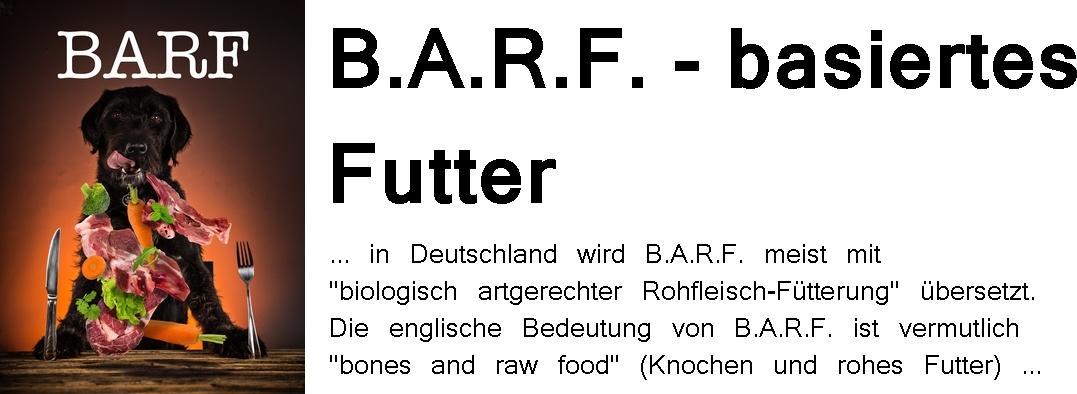 barf-mit_2